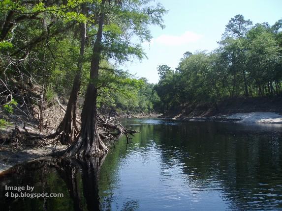 """""""Way Down Upon the Suwanee River"""""""