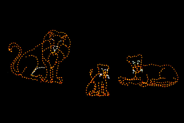 Flickr image by cliff1066 tm of Zoo Lights at the National Zoo