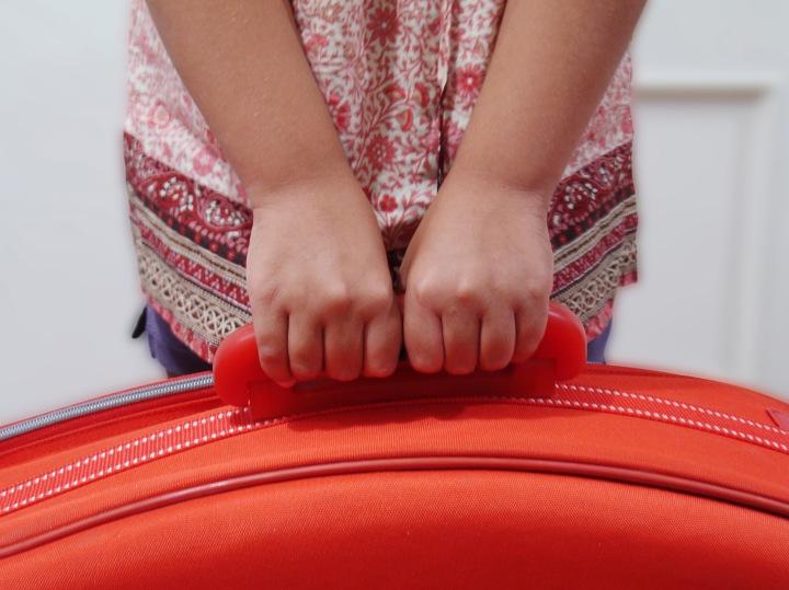 suitcase-1557217.jpg